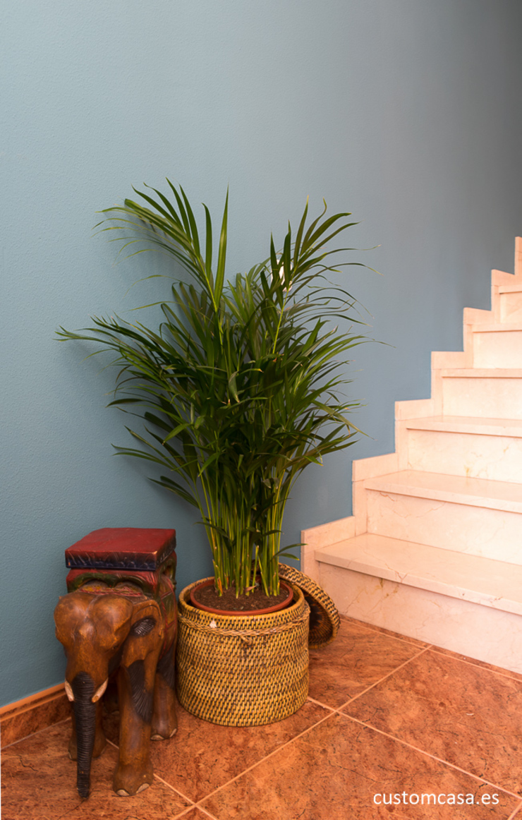 custom casa home staging Colonial style corridor, hallway& stairs