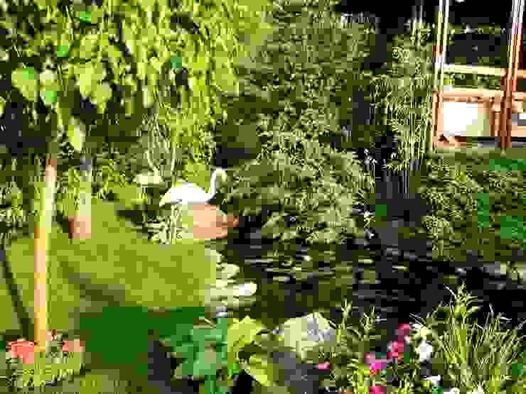 Giardino in stile asiatico di Укр Ландшафт Парк Asiatico