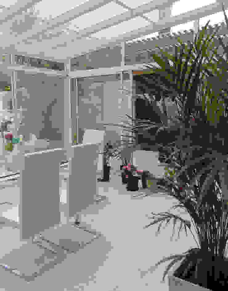 REMODELACION Y AMPLIACION DEPARTAMENTO EN VILLA LURO - CABA Jardines de invierno modernos de ARQUITECTA MORIELLO Moderno