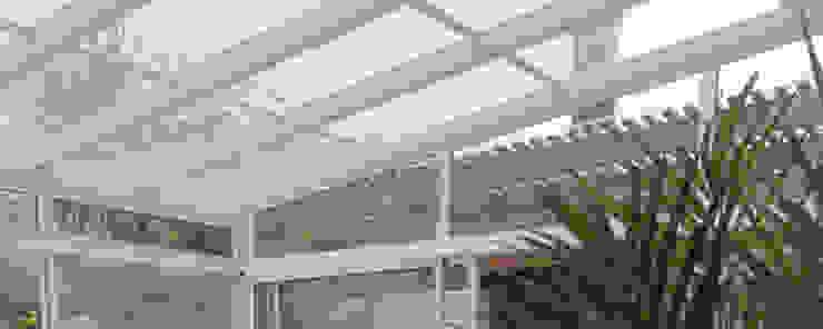 REMODELACION Y AMPLIACION DEPARTAMENTO EN VILLA LURO – CABA Jardines de invierno modernos de ARQUITECTA MORIELLO Moderno