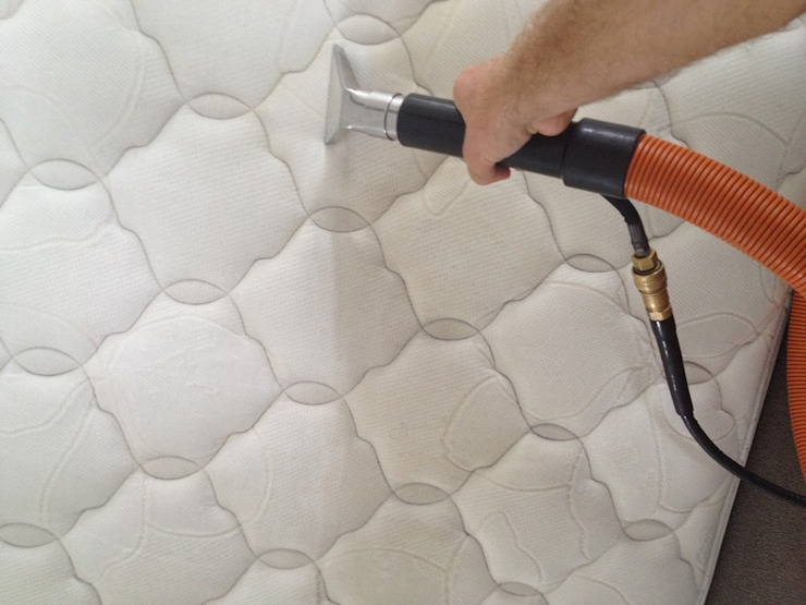Mattress Sanitizing by Carpet Cleaning Wellington