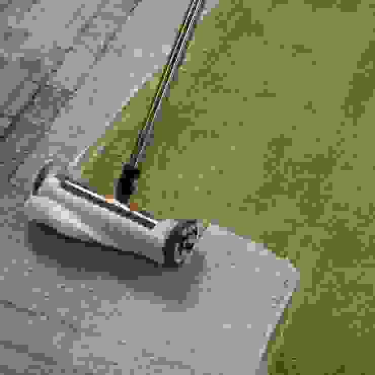 Thorough Carpet Washing by Carpet Cleaning Wellington