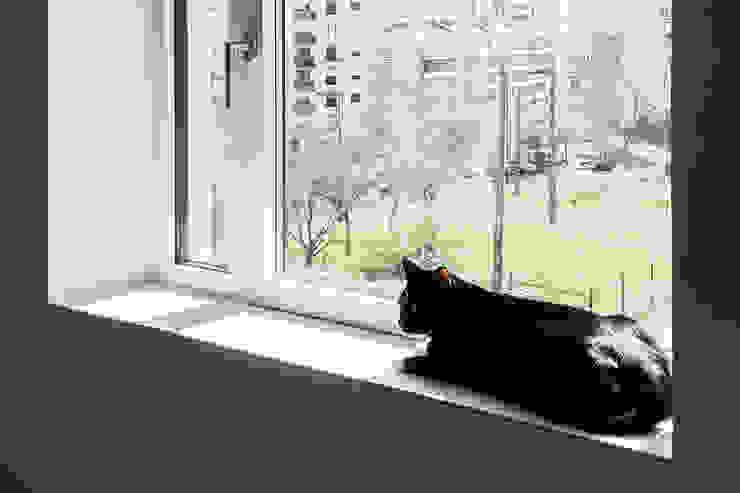 Odivelas Apartment Miguel Marcelino, Arq. Lda. Fenêtres & Portes modernes