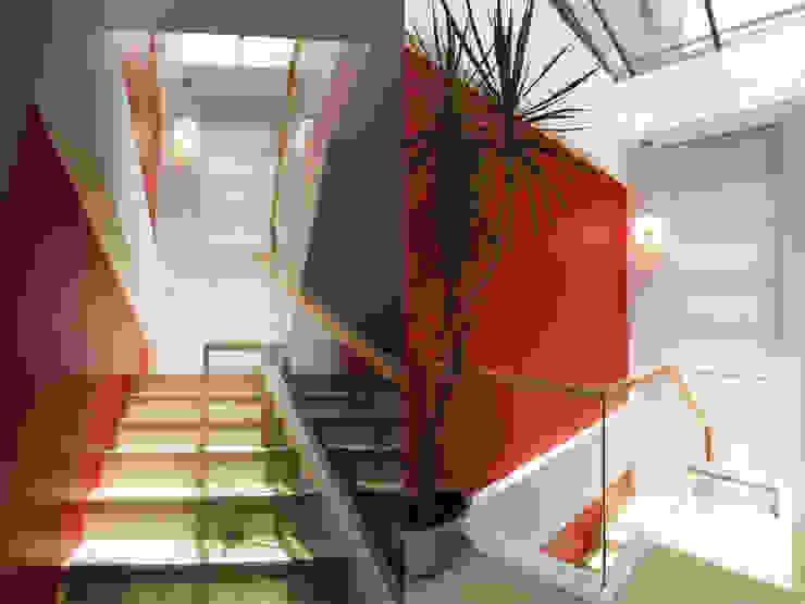 陽光樓梯間 根據 果仁室內裝修設計有限公司 現代風
