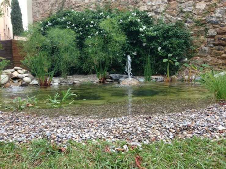 Swimming pond by jardinista, Rustic