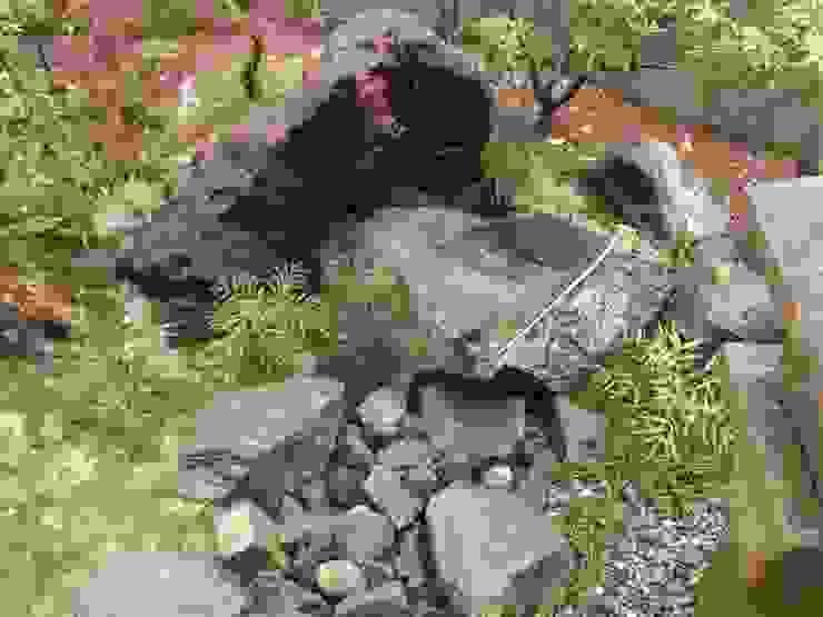 M邸 オリジナルな 庭 の 庭咲桜(にわざくら) オリジナル
