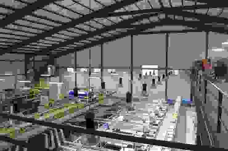 Interior packing EXPAFRUIT de HERNÁN MARTÍNEZ ARQUITECTOS Moderno Hierro/Acero