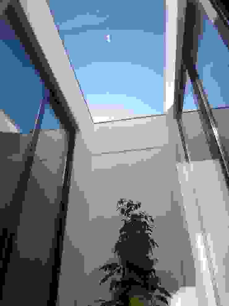 Moderner Wintergarten von Peritraço Arquitectura Modern