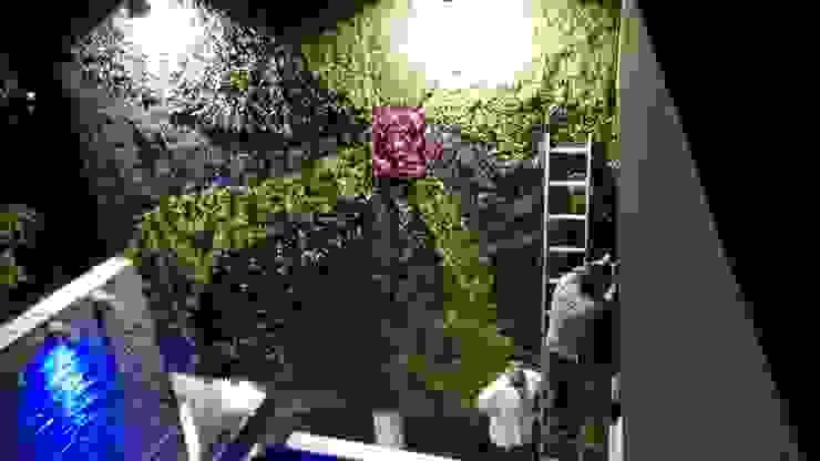 colocación muro verde Jardines de estilo moderno de 3HOUS Moderno