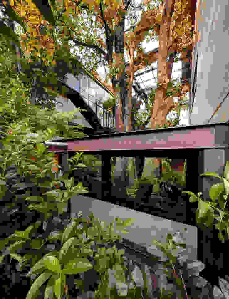 grupoarquitectura Modern style gardens