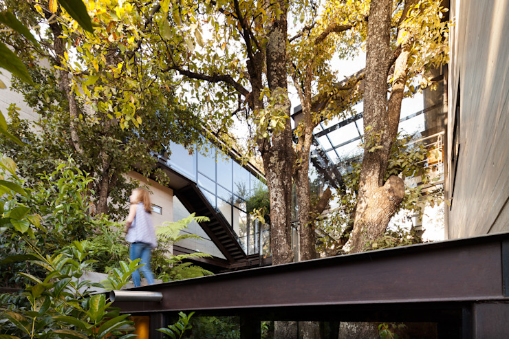 La Casa en el Bosque Jardines modernos de grupoarquitectura Moderno