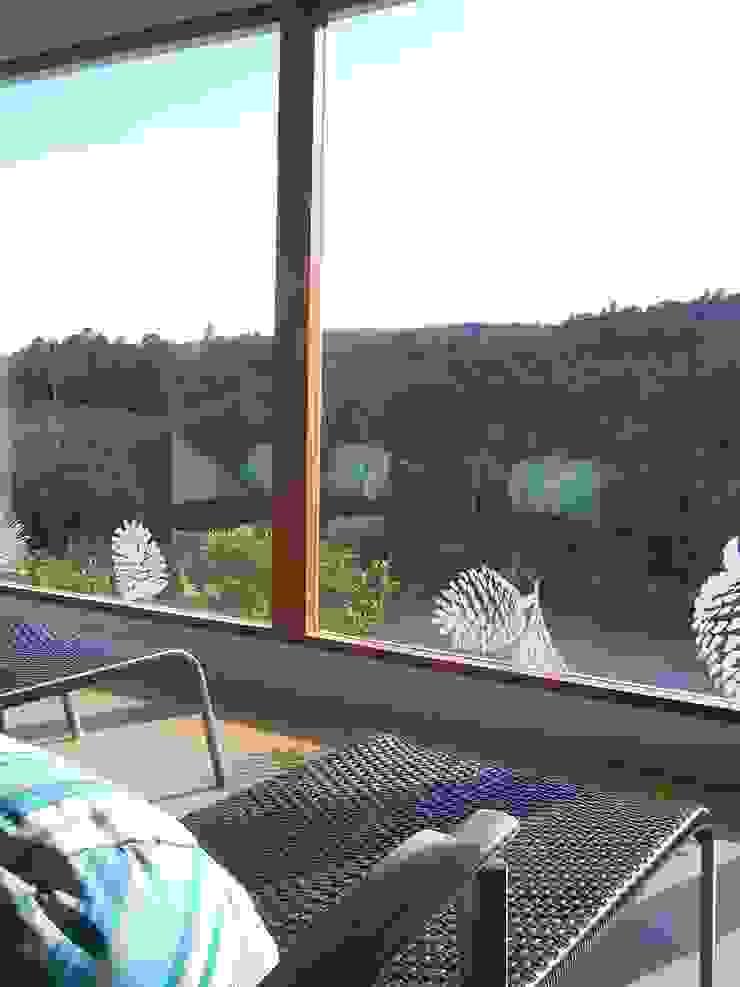 SPA Hotel Parque Ecológico Piedras Blancas:  de estilo tropical por Estudio Edoble, Tropical