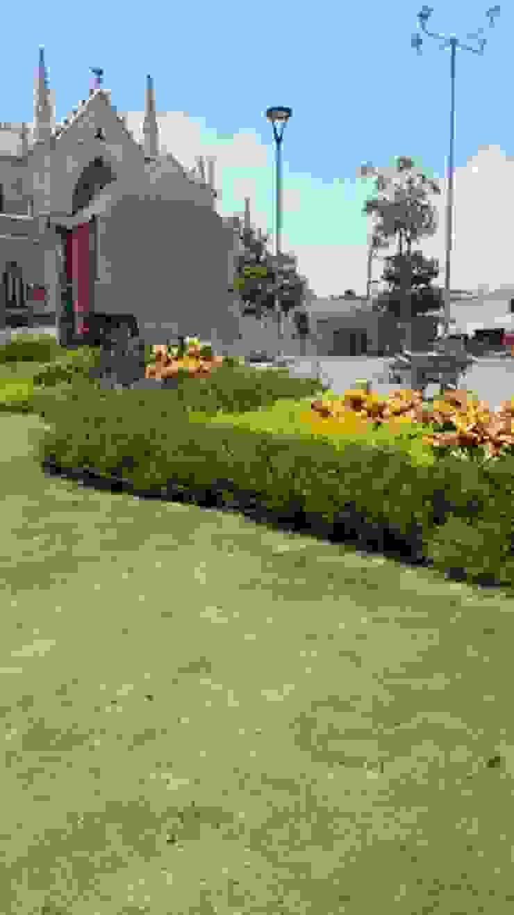 PLAZA SAN ROQUE - BARRANQUILLA Jardines de estilo tropical de BRASSICA SOLUCIONES PAISAJISTICAS S.A.S. Tropical