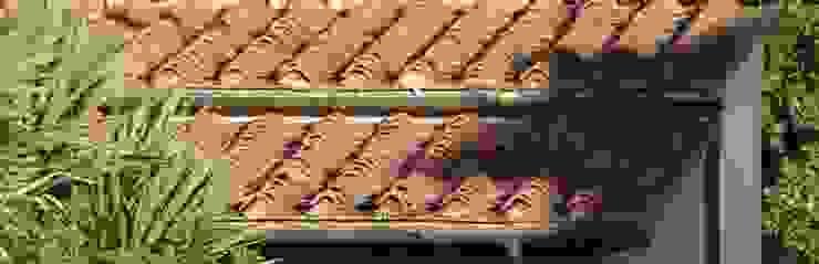 Montecchio S.r.l. Rustic style houses