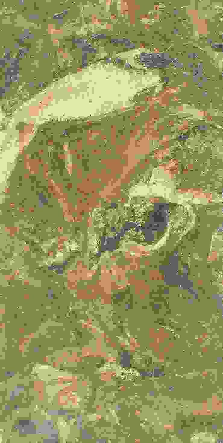Montecchio S.r.l. Стіни