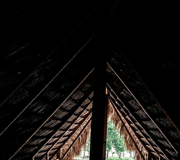 Proyecto en obra:  de estilo tropical por Fabric3D, Tropical