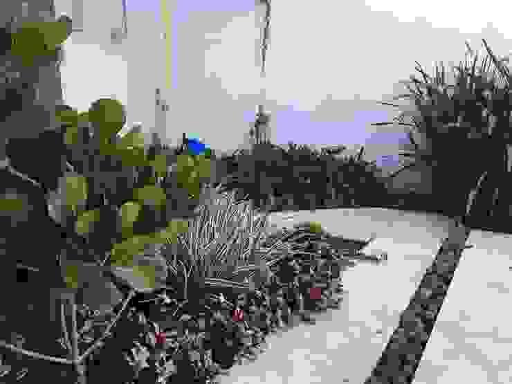 庭院 by TM&LH_ arq.arte - Tatiana Moraes e Lucia Helena, 現代風