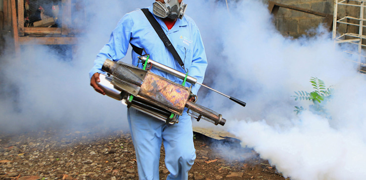 Quality Fumigation by Pest Control Durban