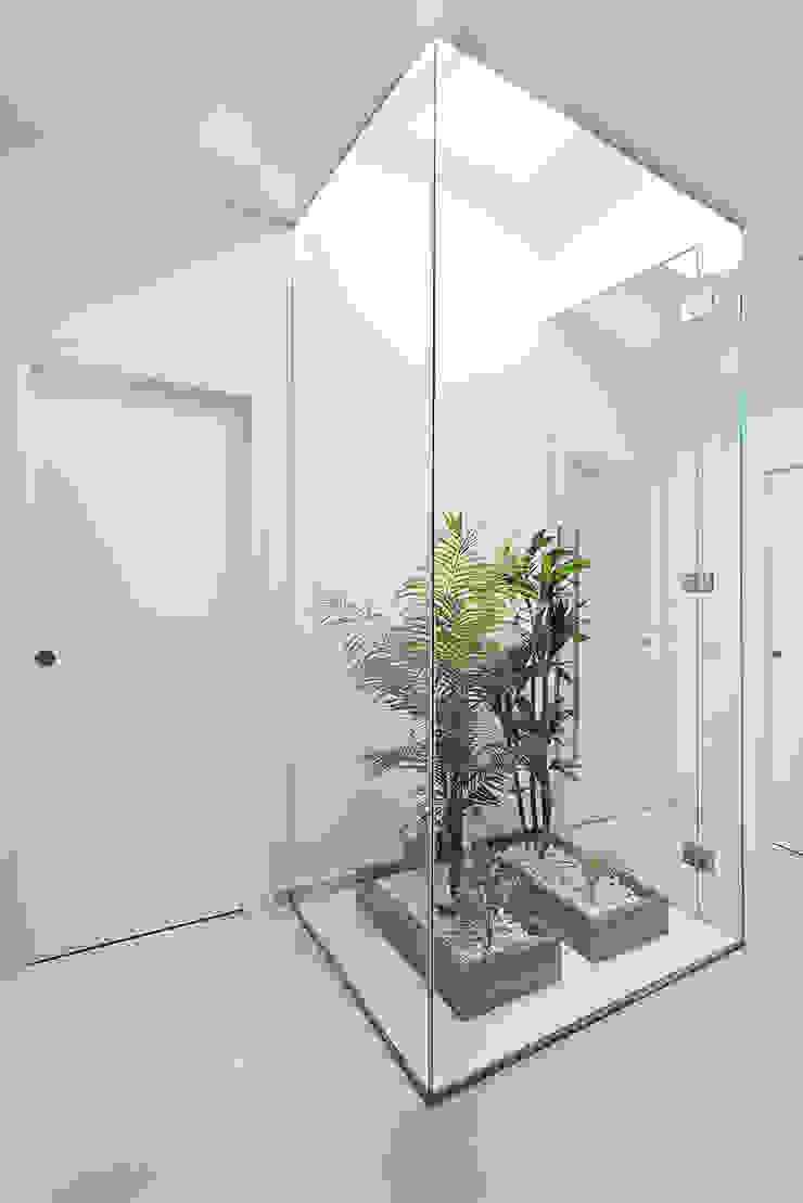 Minimalist style garden by PL Architecture Minimalist