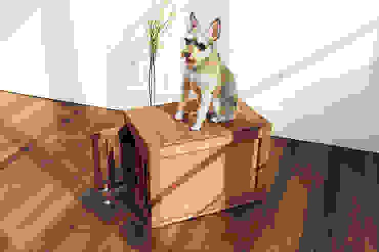 반려동물 가구 Pet Furniture – 마이켄넬하우스 MY KENNEL HOUSE 모던스타일 거실 by TWOINPLACE 모던