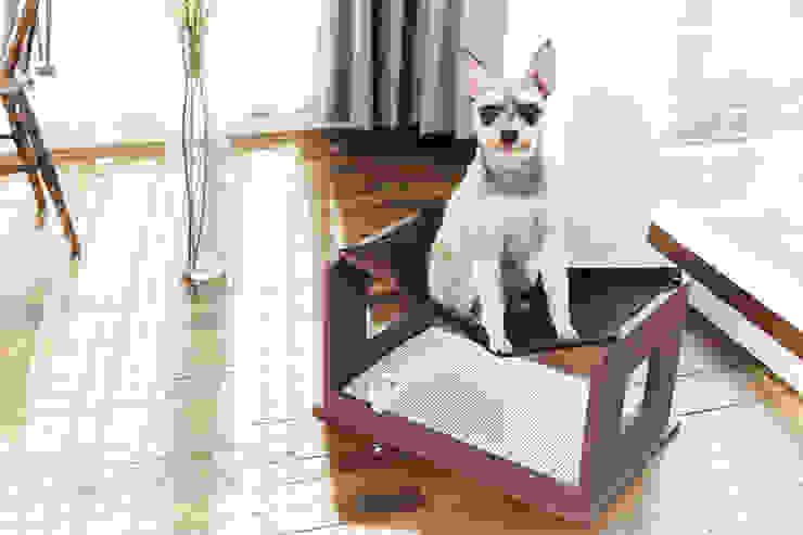 반려동물 가구 Pet Furniture – 밀크테이블 (빈스브라운) 모던스타일 거실 by TWOINPLACE 모던