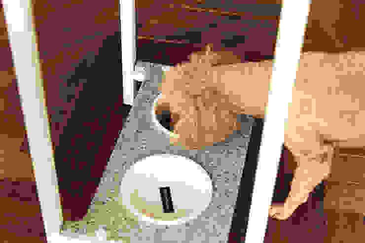 반려동물 가구 Pet Furniture – BoB키친 (쿨그레이) 모던스타일 거실 by TWOINPLACE 모던