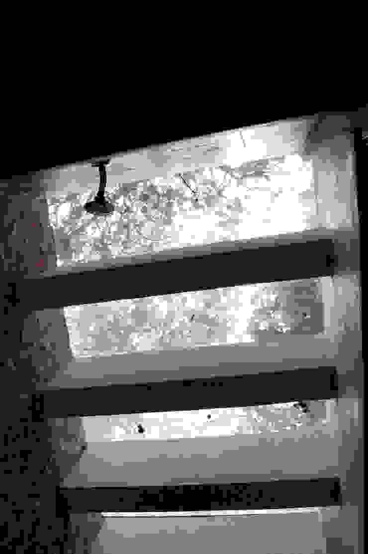 Techo de vidrio en regadera Quinto Distrito Arquitectura Baños eclécticos Vidrio