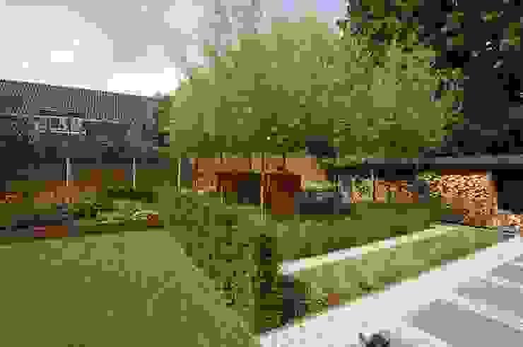 Сад в стиле лофт от BMT Лофт