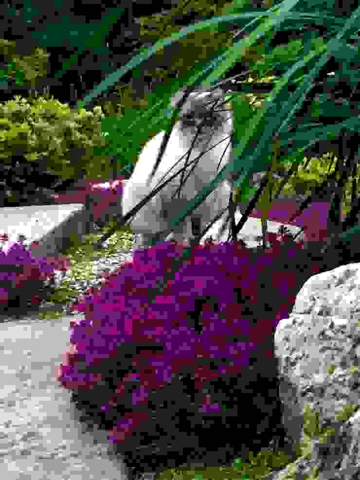 Asian style garden by Esprit Zen Asian