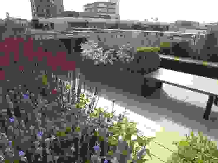 Ganton Street Roof Terrace by Aralia Modern Wood-Plastic Composite