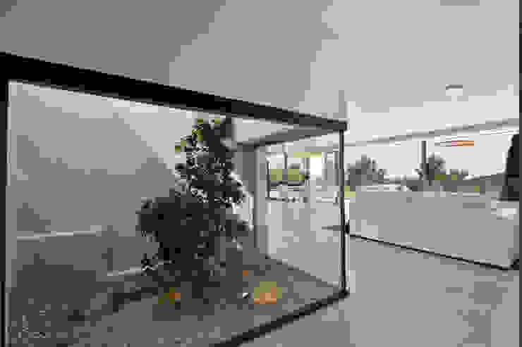 Mediterranean style garden by Atelier Jean GOUZY Mediterranean