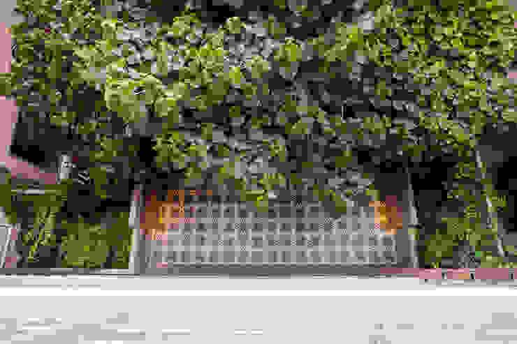 Modern style gardens by Vicca Verde Modern