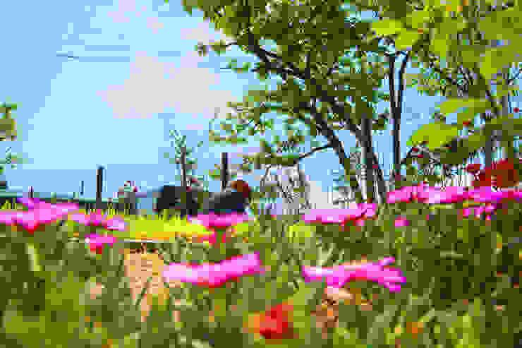 동화같은 마당을 품은 아기자기한 전원주택 클래식스타일 정원 by 한글주택(주) 클래식
