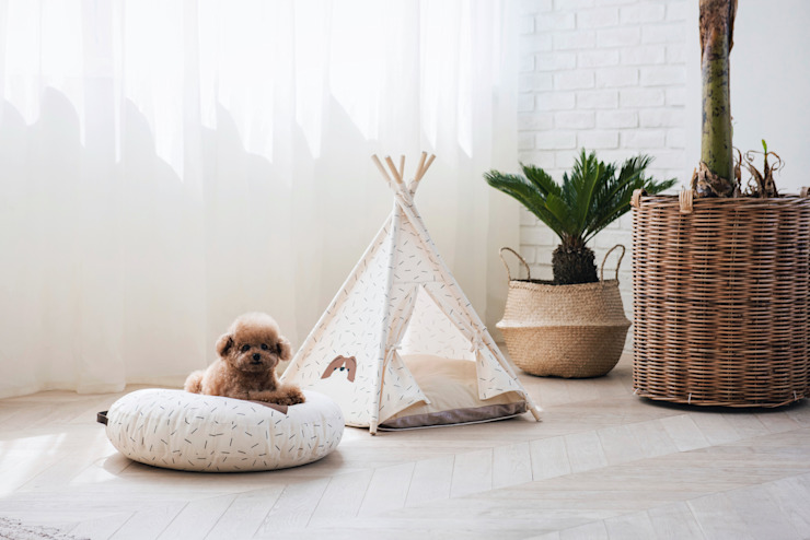 반려동물 가구 Pet Furniture – TEEPEE TENT by HUTS & BAY 모던