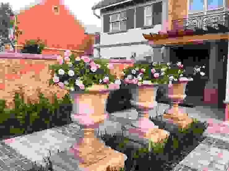 Mediterranean style garden by Gorgeous Gardens Mediterranean