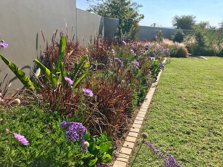 colourful planting:  Garden by Acton Gardens, Country