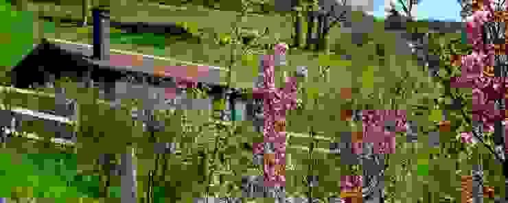 de Rusticasa Rural Madera maciza Multicolor