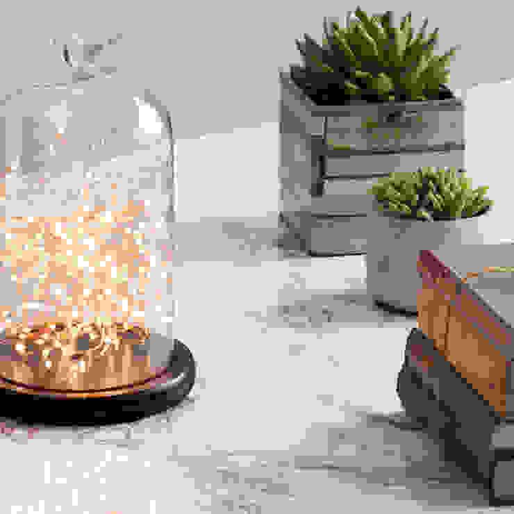 Bell Jar Table Light - Dark Wood & Copper Litecraft SoggiornoIlluminazione Vetro