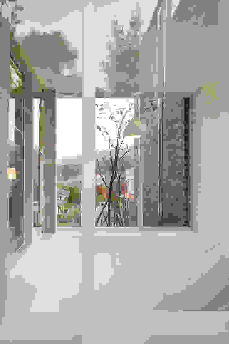 폴리하우스 Poly House 모던스타일 복도, 현관 & 계단 by 건축농장 Farming Architecture 모던