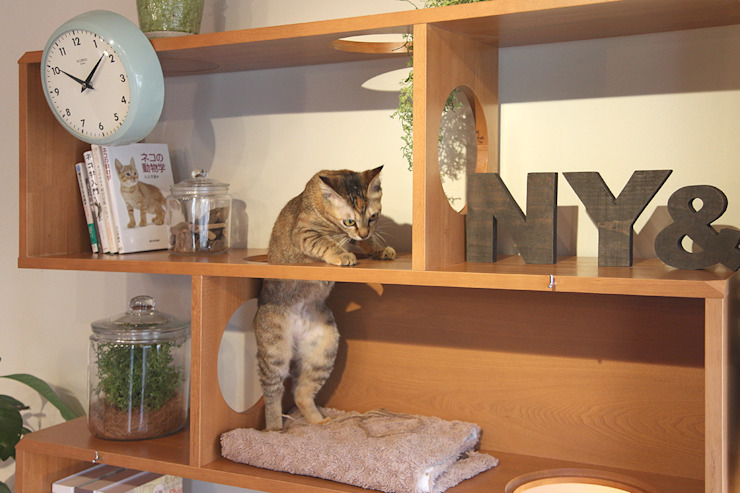 NYAND SHELF <CAVE> - Furniture for Cats and Humans - de &lodge inc. / 株式会社アンドロッジ Moderno