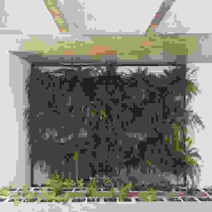 Minimalist style garden by INTRIO Minimalist