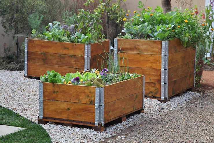 Organic vegetable and herb garden in recycled pallets planter Industrial style garden by Acton Gardens Industrial