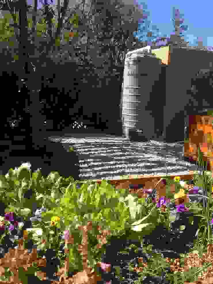 Rain Havesting Industrial style garden by Acton Gardens Industrial