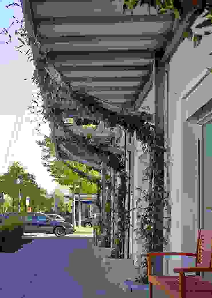 vertical garden Modern Houses by Frey Gruppe Modern
