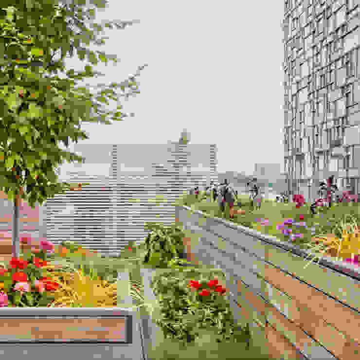 Terrace by BILLINKOFF ARCHITECTURE PLLC, Minimalist