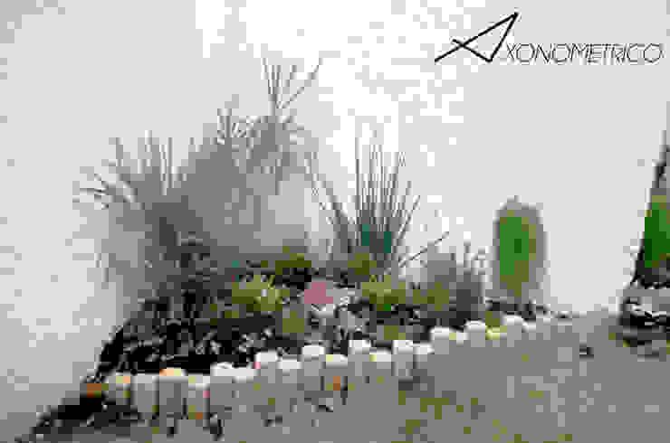 Plantas de sombra Jardines modernos: Ideas, imágenes y decoración de Axonometrico Moderno