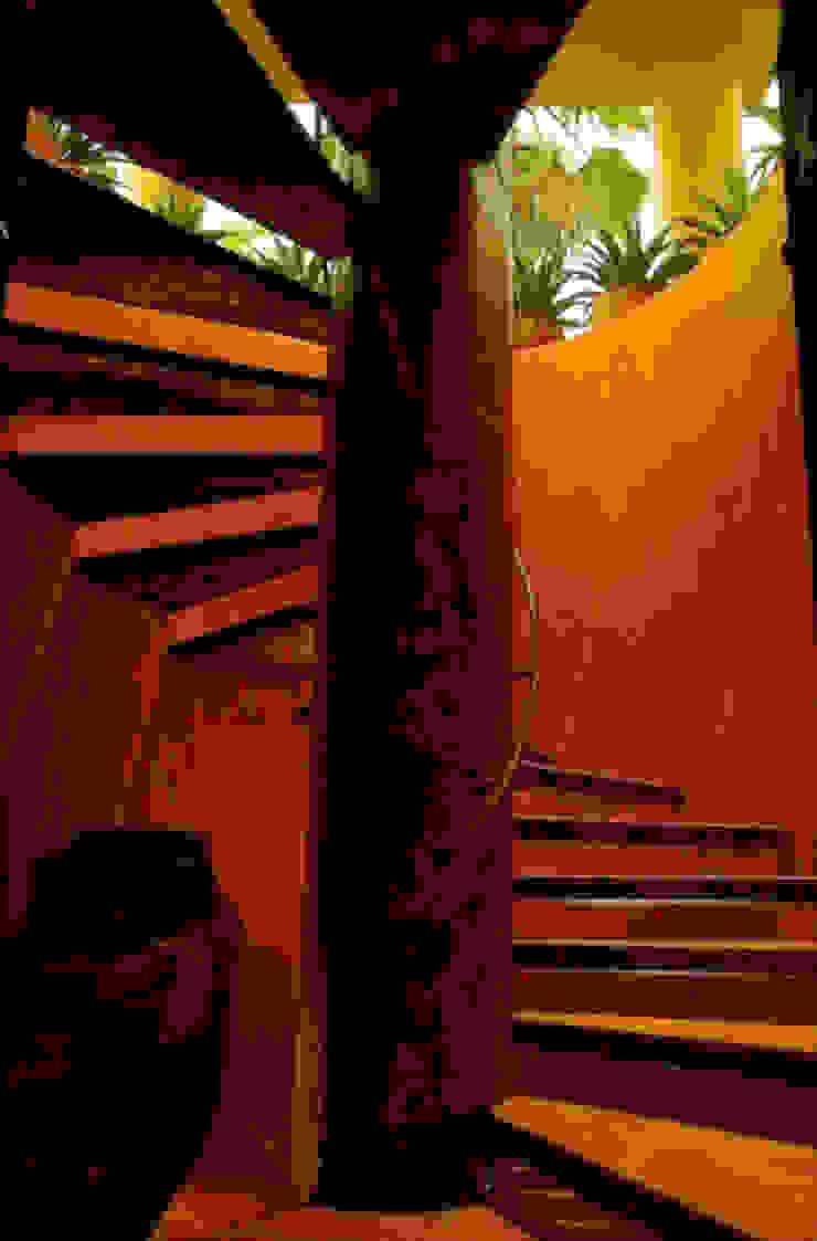 fotógrafo profesional de Arquitectura en México foto de arquitectura Pasillos, vestíbulos y escaleras de estilo tropical Hierro/Acero Ámbar/Dorado