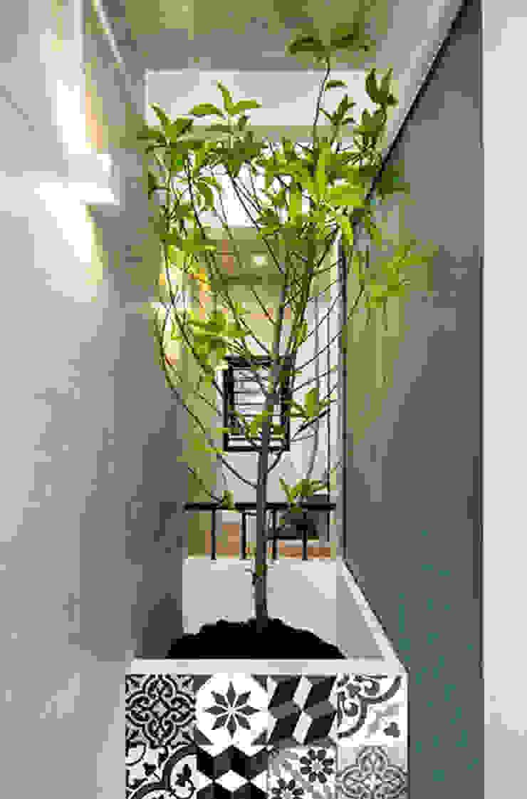 Q10 House Hiên, sân thượng phong cách châu Á bởi Studio8 Architecture & Urban Design Châu Á