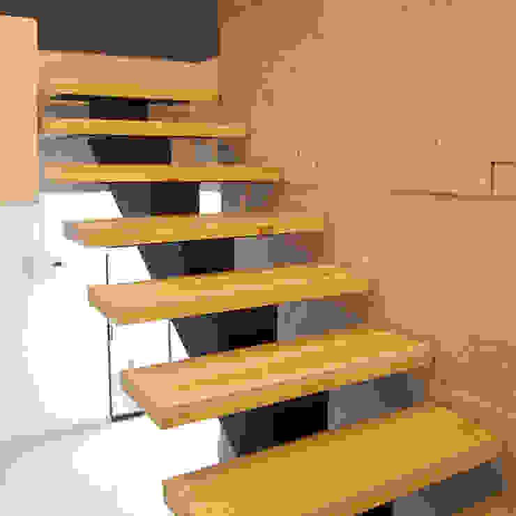 modern  by Pitaya, Modern Solid Wood Multicolored