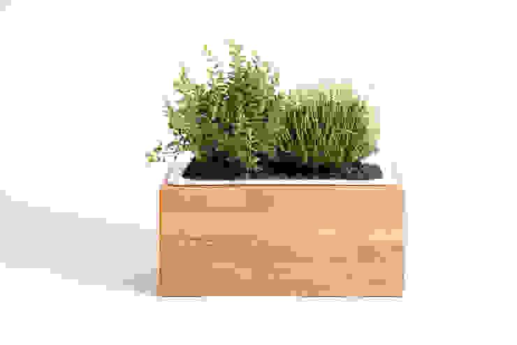 Kräuterbox aus Eiche Massivholz: modern  von Möbelmanufaktur GreenHaus,Modern Holz Holznachbildung